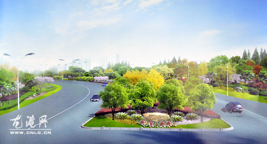 龙港镇世纪大道绿化景观设计方案通过会审