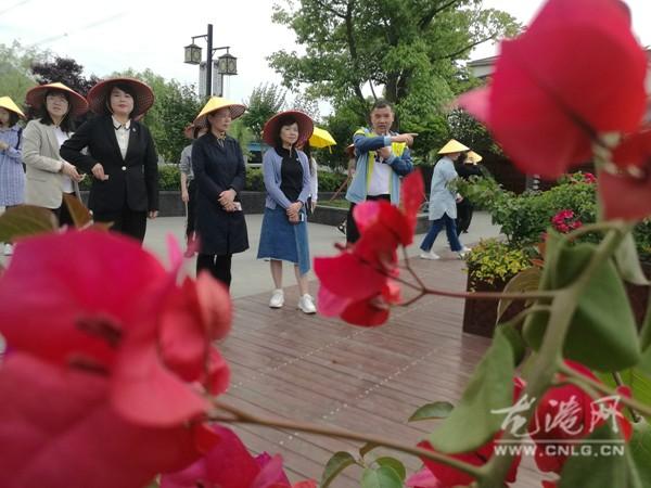 台州温岭市妇联主席潘丹率考察团来龙港考察村