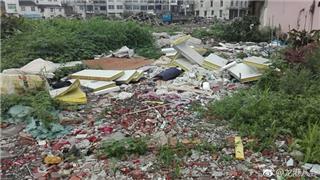 龙港城南社区下埠村城中村拆建空地被偷倒严重
