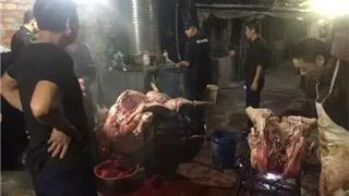 """龙港、望里3个宰猪""""黑窝点""""被查!抓了4人,生猪近1000公斤"""