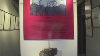 """苍南:箫逸美术馆 闹市中的""""乌托邦"""""""