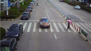 【曝光台】苍南这些车辆未礼让斑马线被抓拍啦!(166)