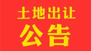 """公告!龙港新城近期拟出让2宗工业""""标准地"""""""